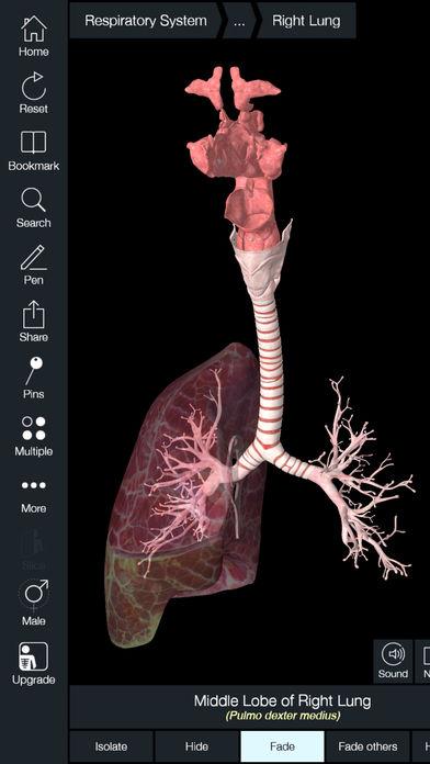 Anatomy 4D App - 1