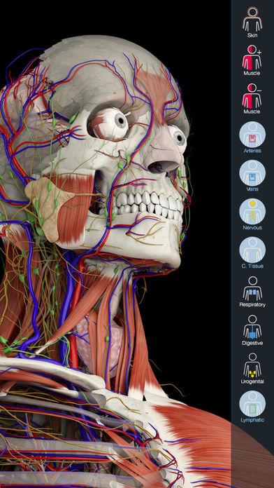Anatomy 4D App - 3