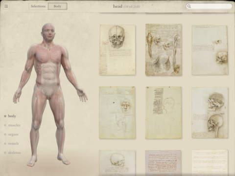 Leonardo da Vinci: Anatomy-3