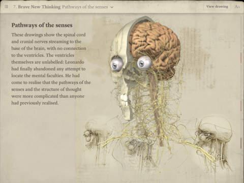 Leonardo da Vinci: Anatomy-4
