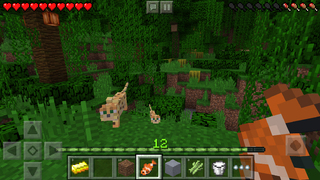 Minecraft: Pocket Edition-4
