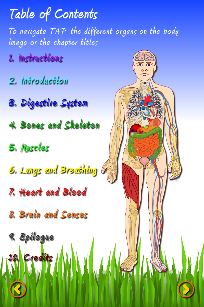 Fun science: The human body-1