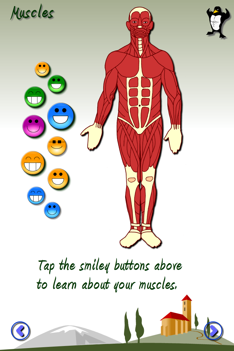 Fun science: The human body App - 4