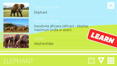 Animal Sounds, Photos and Info App - 3
