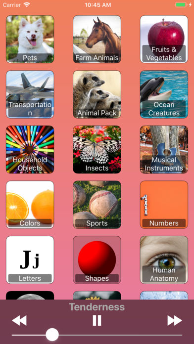Animals For Kids! And More! App - 2