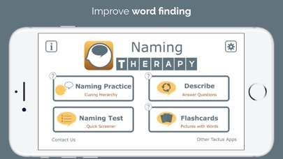 Naming Therapy