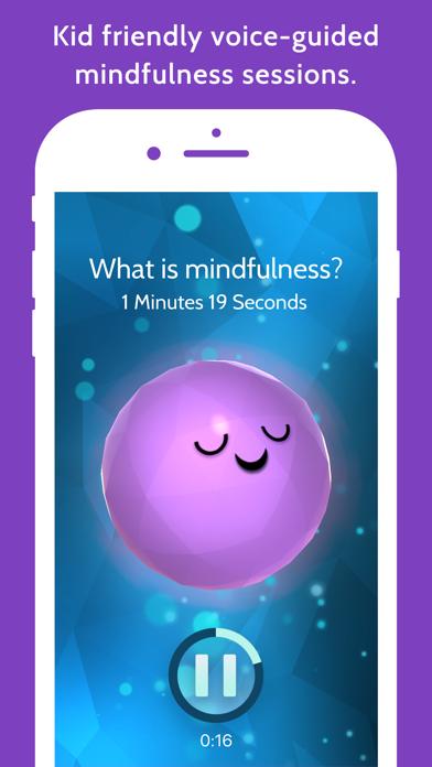 Mindful Powers™