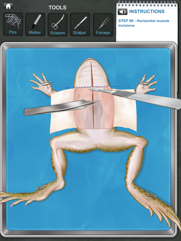 Frog Dissection App - 2