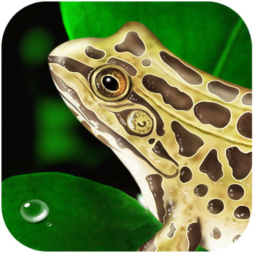 Frog Dissection App - 6