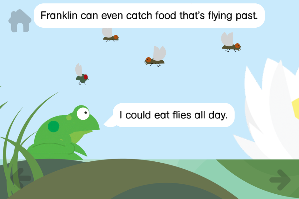 Rounds: Franklin Frog From Nosy Crow-3