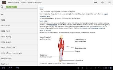 Dorland's Medical Dictionary-3