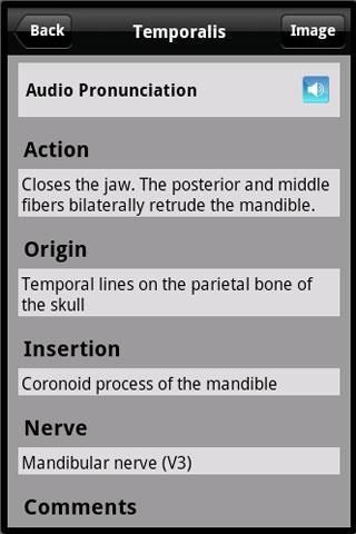 Learn Muscles: Anatomy App - 3