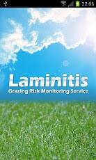 Laminitis-1