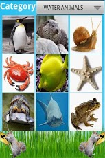 Animals Encyclopedia-1