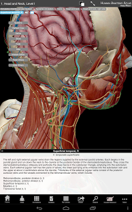 Human Anatomy Atlas-1