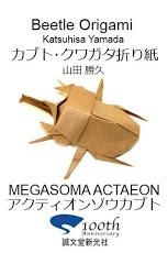 Beetle Origami 4-1