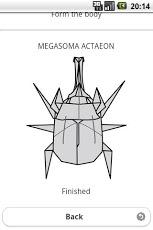 Beetle Origami 4-4