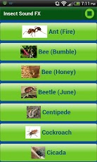 Insect Sound FX App - 2