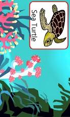 Sea Creatures Voice Flashcards App - 2