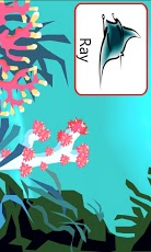 Sea Creatures Voice Flashcards App - 5