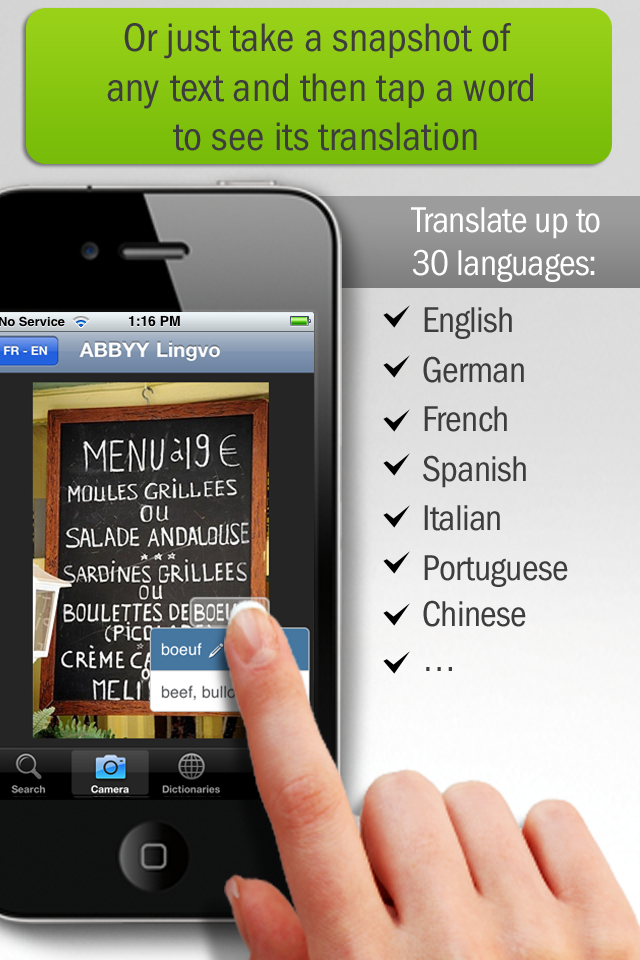 Lingvo Dictionaries: English ‹-› Spanish, French, German, Italian Dictionary Titles