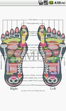 Reflexology foot chart-1