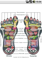 Reflexology foot chart-3