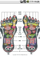 Reflexology foot chart-5