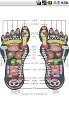 Reflexology foot chart-6