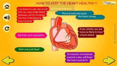 Body Organs 4 Kids-5