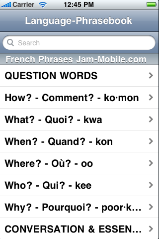 English-French Language Translator Phrasebook-1
