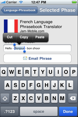 English-French Language Translator Phrasebook-4