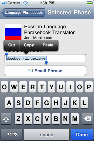 English-Russian Language Translator Phrasebook with 1700 Word Dictionary-4