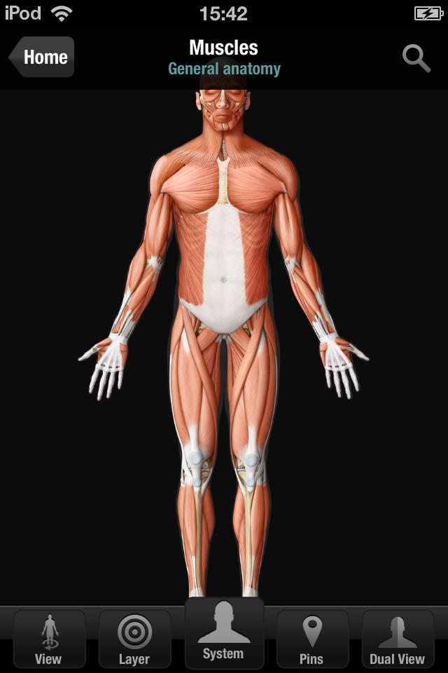 Virtual Human Body App - 1