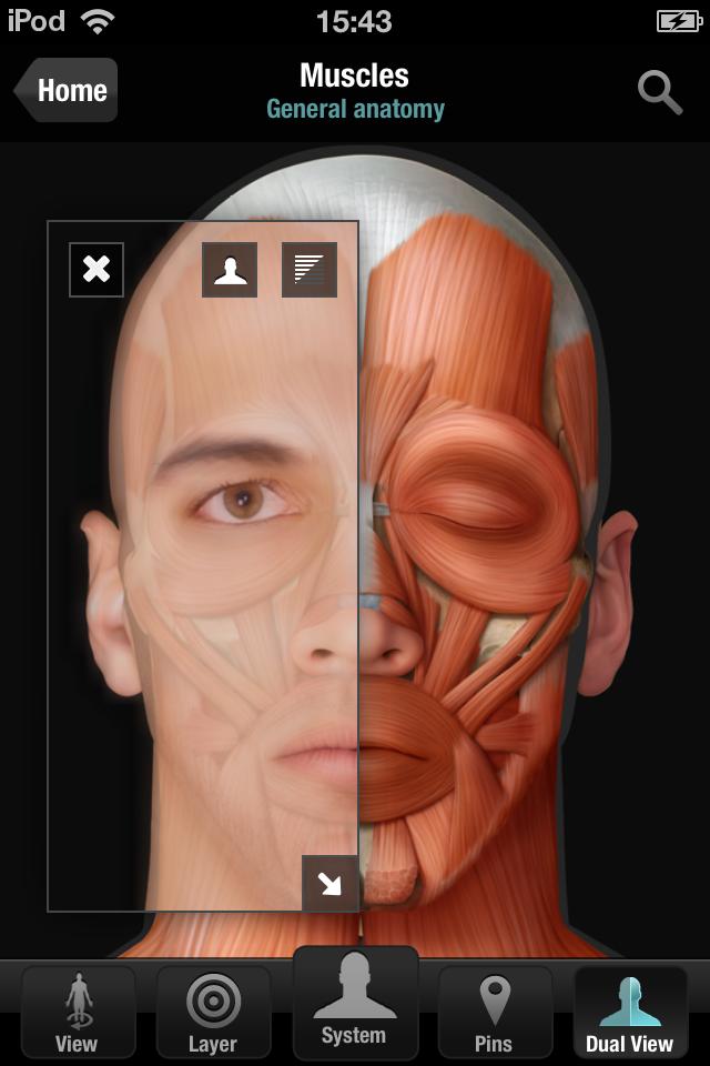 Virtual Human Body App - 2