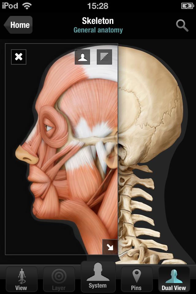 Virtual Human Body App - 4