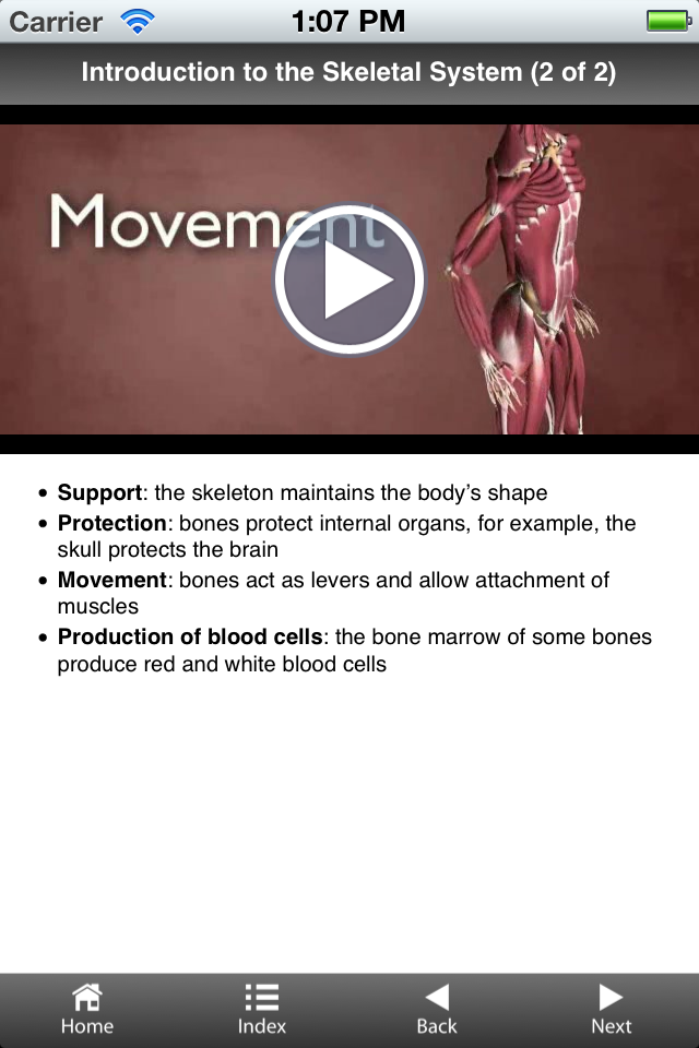 GCSE Biology - Healthy Living-2