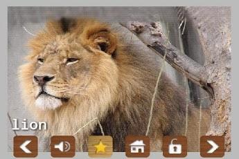 Kids Zoo Animal Sounds & Photos App - 3