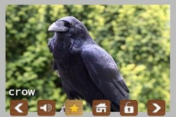 Kids Zoo Animal Sounds & Photos App - 4