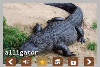 Kids Zoo Animal Sounds & Photos App - 5
