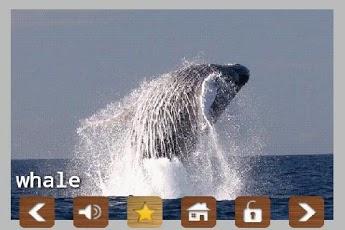 Kids Zoo Animal Sounds & Photos App - 6