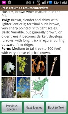 Virginia Tech Tree ID App - 5