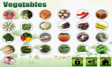 Fruit shape color veg for kids-3