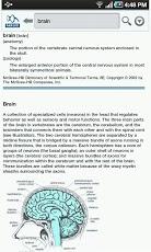 Dictionary-5