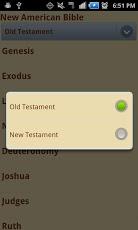 Laudate - #1 Free Catholic App-7