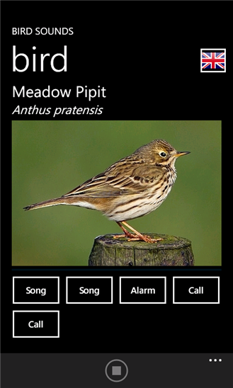 Bird Sounds App - 5