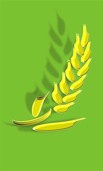 World food news-2