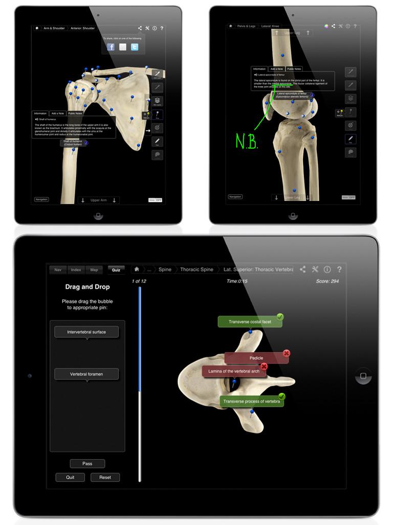 Skeleton System Pro III-3