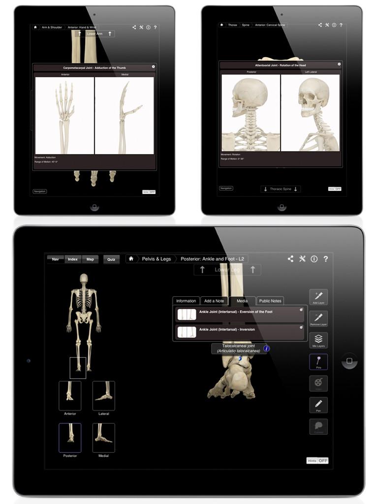 Skeleton System Pro III-5