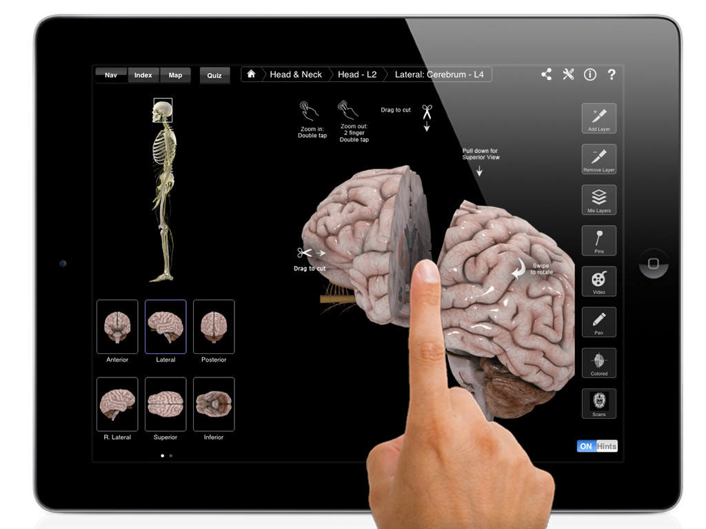 Brain and Nervous System Pro III Review | Educational App Store
